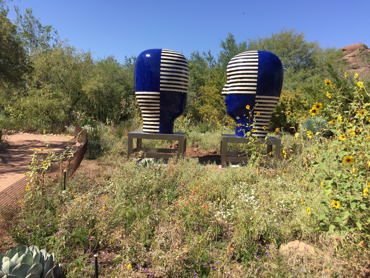 Untitled, Heads, 2014   hand-built glazed ceramics   Photo courtesy of Desert Botanical Gardens